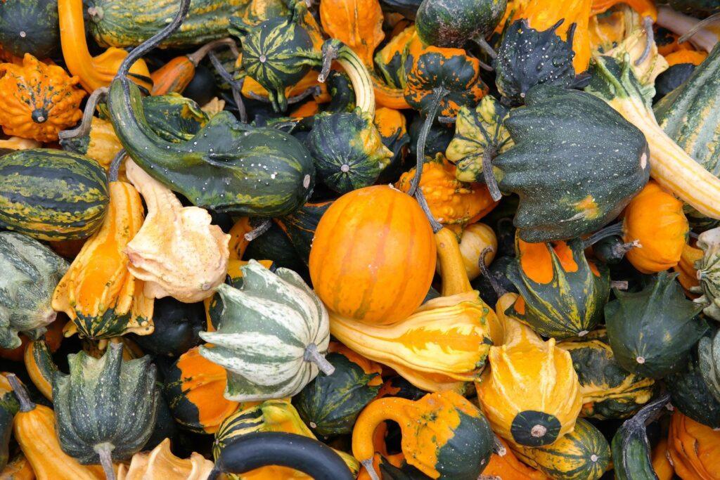 Pumpkins 228474 1920